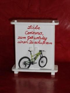 Zuschuß-zum-Mountainbike-2